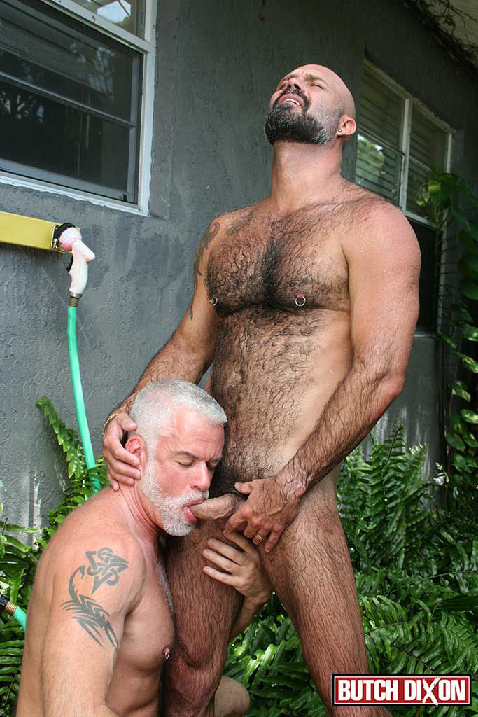 silverdaddies gay porn Gay Silver Daddies Fucking | Free Mature Blowjob Porn Videos.